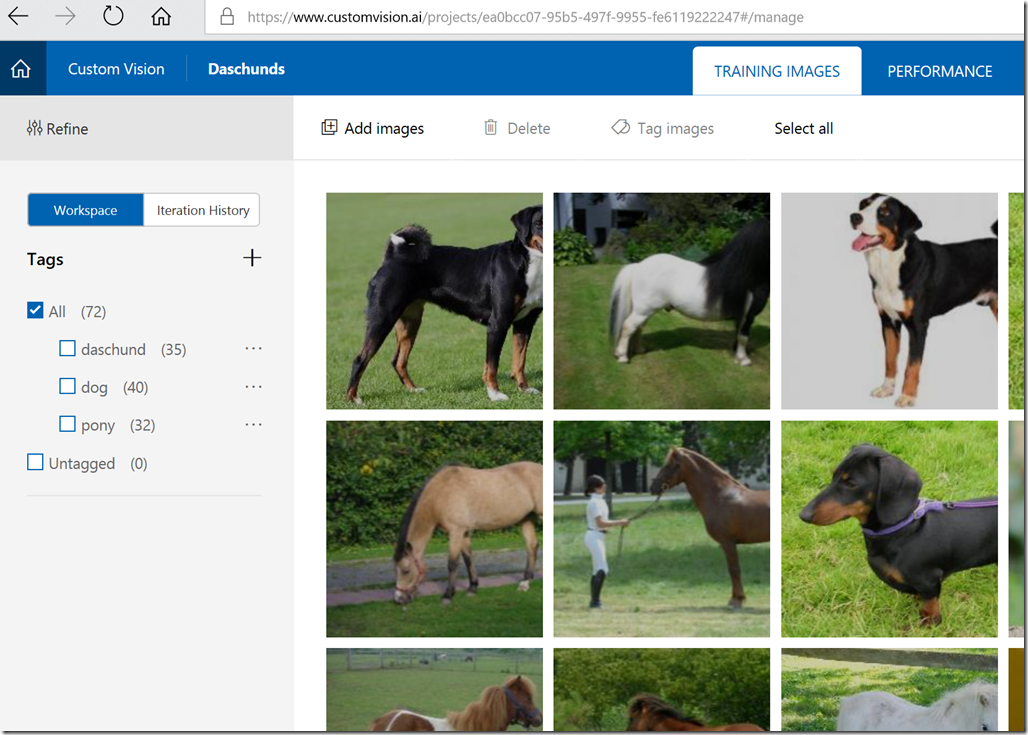 First Experiment with Image Classification on Windows ML
